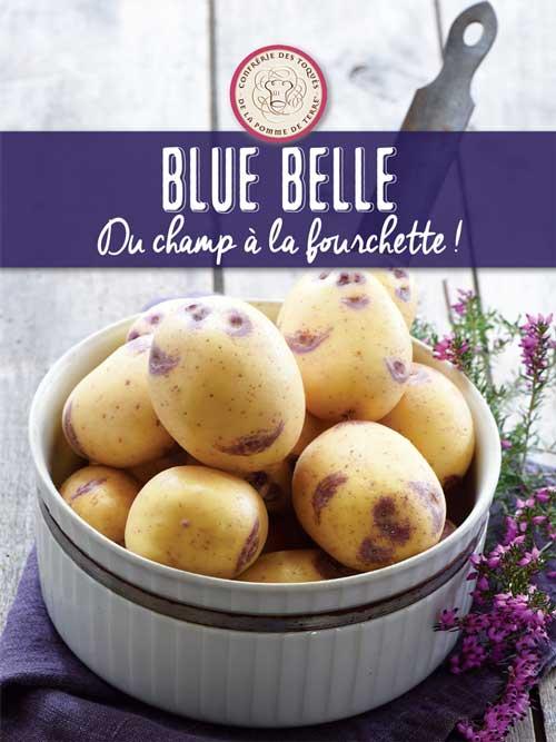 Dossier de Presse Blue Belle
